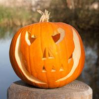 Halloween græskar lygte